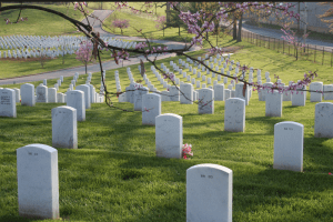 Military graves marked by tomestones